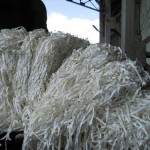 Shredded Plastic for RDF
